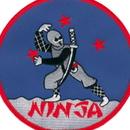 Tiger Claw Ninja 4