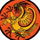 Tiger Claw Dragon Patch (4