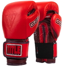TITLE Boxing AHABG American Heart Association Bag Gloves