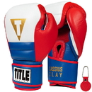 Muhammad Ali ALIUS USA Training Gloves