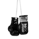 TITLE Boxing RSBMBG Rock Steady Mini Gloves
