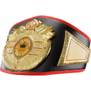 TITLE Boxing CLTB 10 Wings Of Prey Gold Nugget TITLE Belt