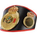 TITLE Boxing CLTB 11 Triple Crown Of A Champion TITLE Belt