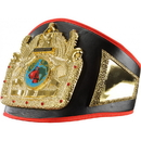 TITLE Boxing CLTB 14 Flight Of Domination TITLE Belt