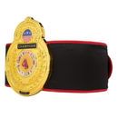 TITLE Boxing CLTB 7 Old School TITLE Belt