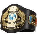 TITLE Boxing MCTBA World Champion Mini TITLE Belt