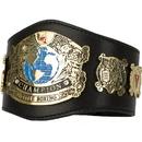 TITLE Boxing MCTBB Undisputed Champion Mini TITLE Belt