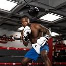 TITLE Boxing SDBSET Spider Bag