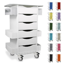 TrippNT White Core-6D Polyethylene Locking 6 Drawer Cart: 23 x 35 x 19 inches WHD