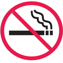 Seton 28831 Safety Door And Window Decals- (No Smoking Graphic Only)