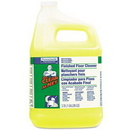 Mr. Clean Mr. Clean Finished Floor Cleaner PGC02621CT