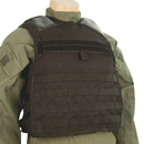 5ive Star Gear Lw-1 Plate Carrier