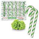 Accoutrements ACC-12402-C Wasabi Flavored Candy Canes Box Of 6
