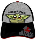 Star Wars The Mandalorian The Child Unknown Species Baseball Hat