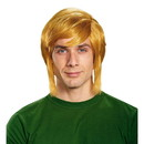 Disguise Legend of Zelda Link Adult Costume Wig