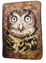 Just Funky JFL-CFB-MIS-OWL-C Owl Face 45