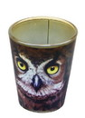 Just Funky JFL-SG-MIS-OWL-C Owl Face 2oz Shot Glass