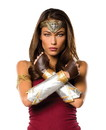 Rubie's RUB-34600-C Justice League Wonder Woman Adult Deluxe Costume Accessory Set