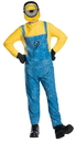 Rubie's Despicable Me 3 Mel Minion Costume Adult Standard