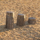 UltraPLAY UP500 NatureRocks Tree Stumps (Ages 5-12)