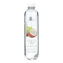 Sanavi Sparkling Spring Water - Coconut - Case of 12 - 17 Fl oz.