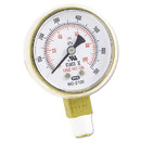 Anchor Brand ANRB2100 Replacement Gauge, 2 x 100, Brass