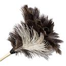 Boardwalk BWK13FD Professional Ostrich Feather Duster, 7