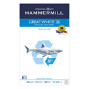HAMMERMILL/HP EVERYDAY PAPERS HAM86704 Great White Recycled Copy Paper, 92 Brightness, 20lb, 8-1/2 X 14, 500 Shts/ream