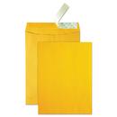 Quality Park QUA41620 High Bulk Redi-Strip Catalog Envelope, 10 X 13, 250/box