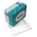 Quality Park QUA41689 Catalog Envelope, 10 X 13, White, 250/box