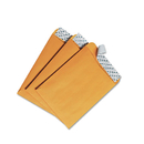 QUALITY PARK PRODUCTS QUA44162 Redi-Strip Catalog Envelope, 6 X 9, Brown Kraft, 100/box
