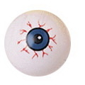 U.S. Toy 7295 Eye Balls