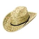U.S. Toy H51 Barndance Hat