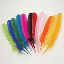 U.S. Toy MX156 Assorted Color Turkey Feathers