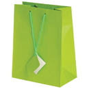 U.S. Toy TU8-19 Medium Gift Bags / Light Green