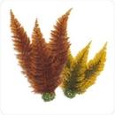 BiOrb Autumn Fern Plant Pack, Medium