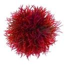 Biorb BO00375 Red Colour Ball