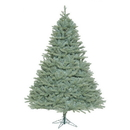 Vickerman A164785 10' x 82'' Colorado Blue Spruce 5406Tips