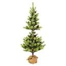 Vickerman D182440 4' Austrian Pine Tree Burlap Base
