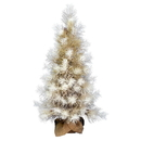 Vickerman D184540 4' Frosted Japanese White Pine Tree