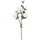 Vickerman FA172601 Magnolia x 4-Cream (Pk/3)