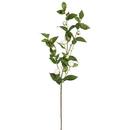 Vickerman FD170101-3 34'' Tea Rose Spray -White 3/Pk