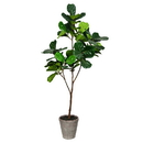 Vickerman FH190150 5' Green Potted Fiddle Tree