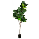 Vickerman FH190180 8' Green Potted Fiddle Tree