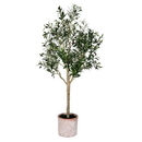 Vickerman FH190350 5' Green Potted Olive Tree