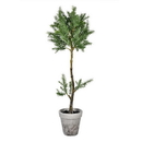 Vickerman FJ190644 44