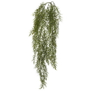 Vickerman FK170301 34