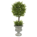 Vickerman FK172501 15