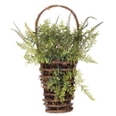 Vickerman FQ181002 21