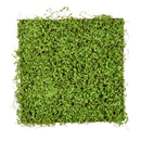Vickerman FS190801 19.5'' Green Leaves Square Mat